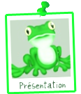 Les aventures de Froggy. Tour-du-monde-stop-blog-froggy_presentation2