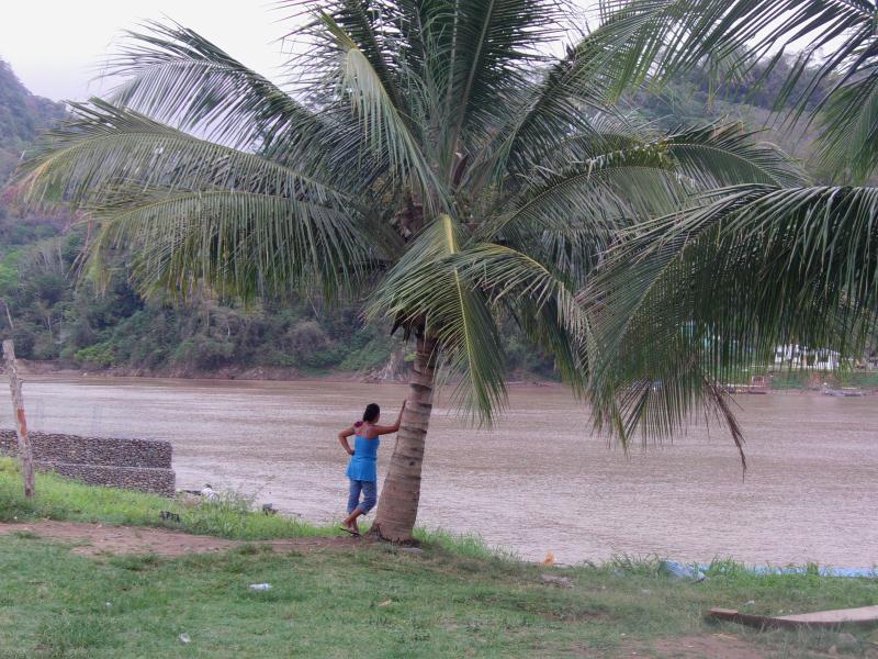 Le fleuve a Rurrenabaque