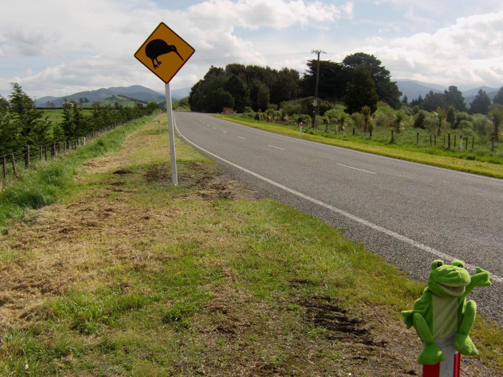 Guizmo fait du stop chez les Kiwis même si ils ne rencontrera pas cet oiseau nocture