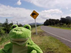 Froggy chez les Kiwis