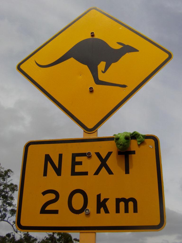 Froggy au pays des Kangourou