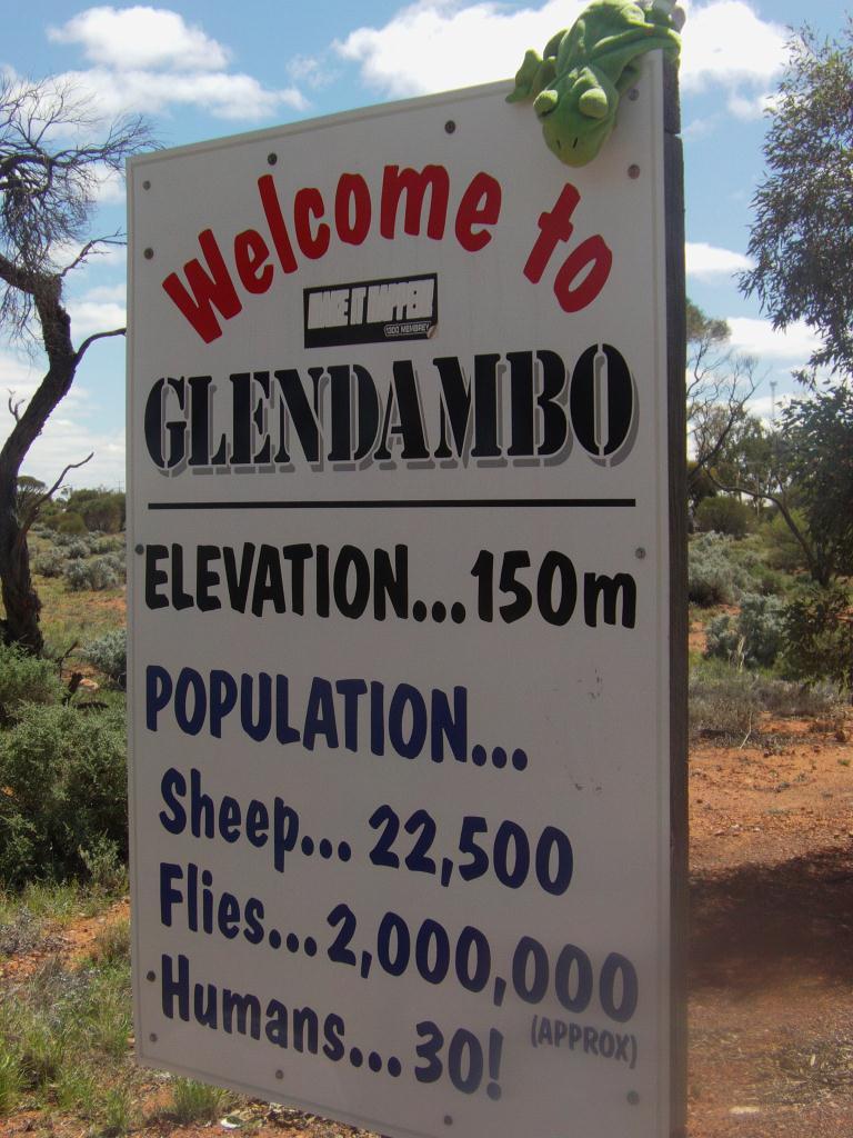 Glendambo : 22500 moutons, 2 000 000 mouches, 30 humains