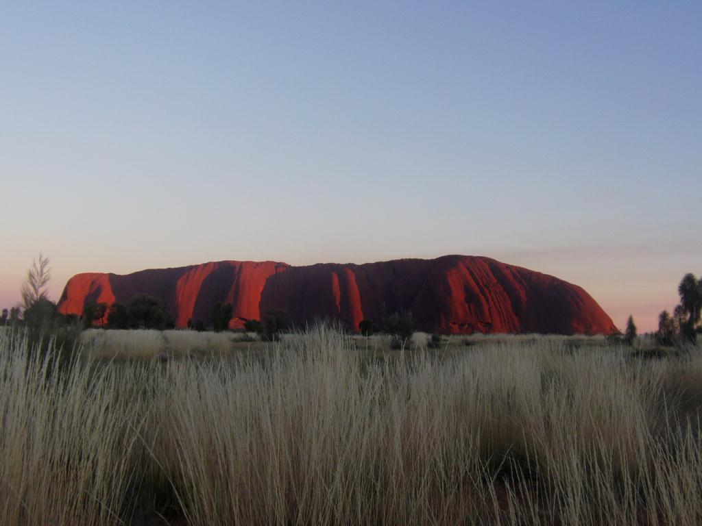 Uluru le matin
