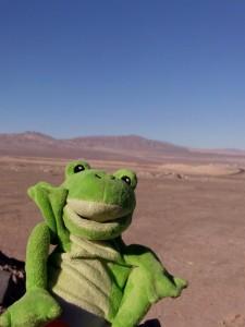 Guizmo au desert d´Atacama