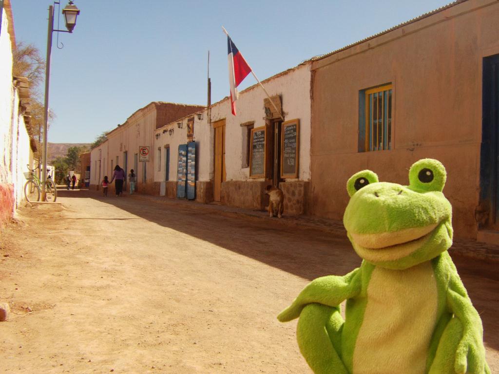 Guizmo a San Pedro de Atacama