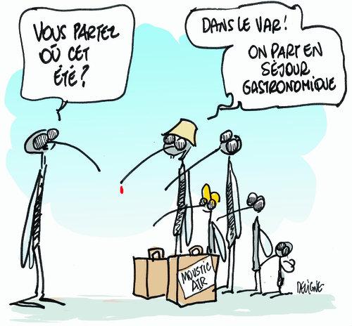 Moustique-Var