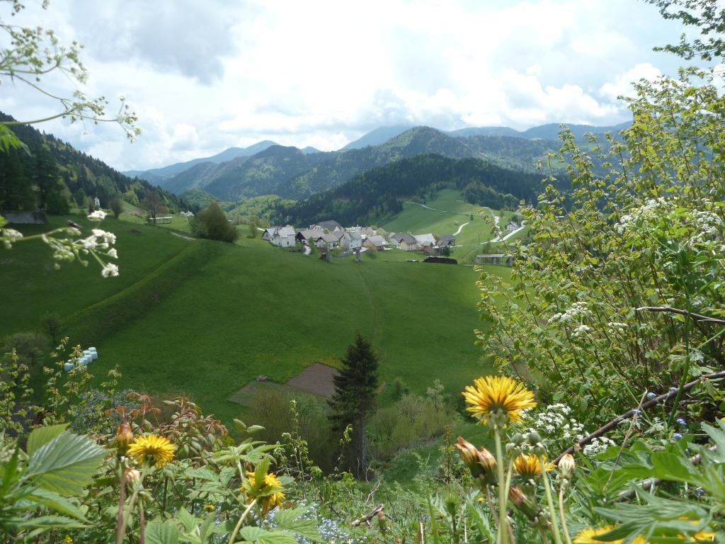 Alpes en Slovénie