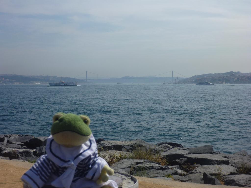 Froggy à Istanbul - Détroit du Bosphore