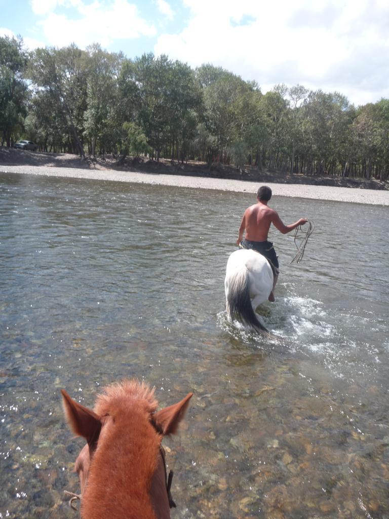 Balade a cheval , Terelj