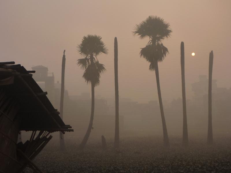 P1090506_Patna_Inde_Bihar