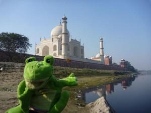 Froggy au Taj Mahal