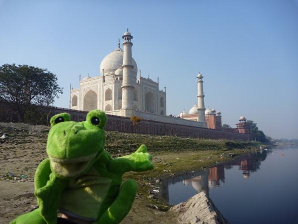 P1090757 - Froggy au Taj Mahal