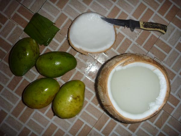 P1100301 - Mangues et coconuts