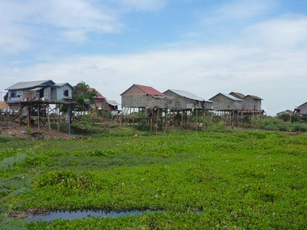Maisons sur pilotis près du lac