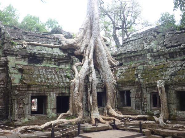 P1100401 - Temples d'Angkor