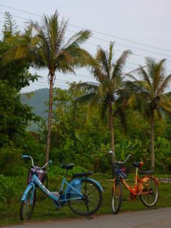 Ballade en vélo au Laos