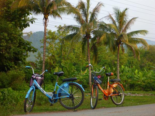 Nos vélos au Laos
