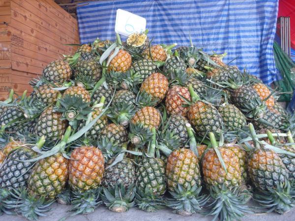 P1110132 ananas thailande