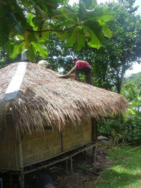 P1110168 thailande réparation toit bambou bois