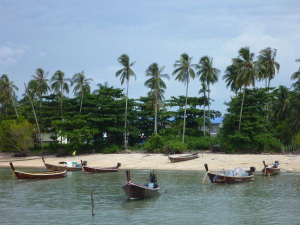 P1110211 thailande bateaux cocotiers