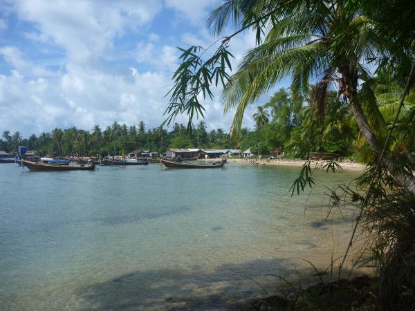 P1110297 thailande plage cocotier palmier