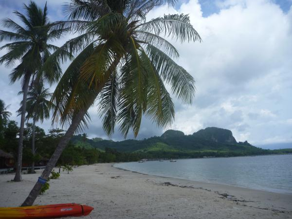 P1110312 thailande plage sable blanc cocotiers palmiers