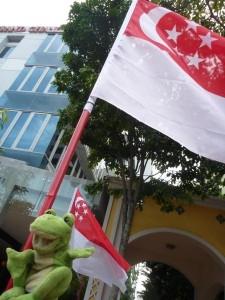 P1110643 Guizmo à Singapour !