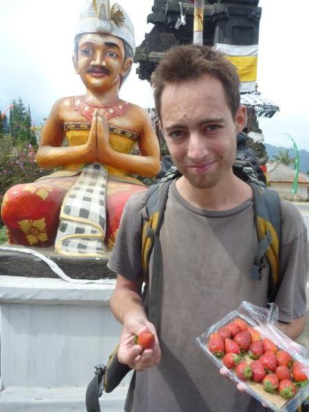 P1120034 fraises Bali