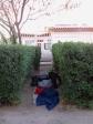 imag0553 Nuit a la belle etoile a Calama