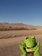 imag0561 Desert d´Atacama