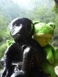 p1060921 - Emeishan : Guizmo se tape un singe !