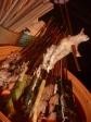 p1070412 - Une belle patte de poulet en brochette, toujours aussi appétissant