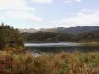 imag0102 - rando autour du lake waikaremoana