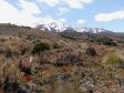 imag0169 - Rando dans la parc Tongariro