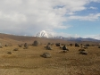 imag0212 - Rando dans la parc Tongariro