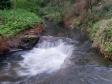 imag0302 - Ptite cascade d'eau chaude entre Rotorua et Taupo
